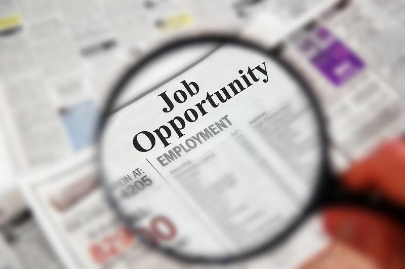 548 μόνιμοι υπάλληλοι στην Αρχή Δημοσίων Εσόδων: οι τίτλοι που θα ζητηθούν
